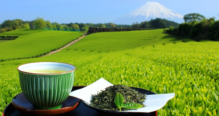 マルサン萩間茶 通年商品