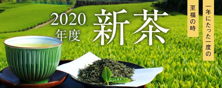 2020年度 新茶